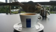 It was my second favourite place in the museum, just after the dinosaur exhibit and a little ahead of the gift shop. The Museum Cafe is located in next room...