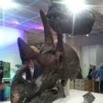 Triceratops and Tyrannosaurus Casts
